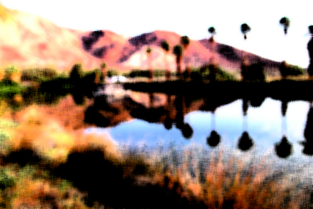 mojave-sunrise-by-palm-palm